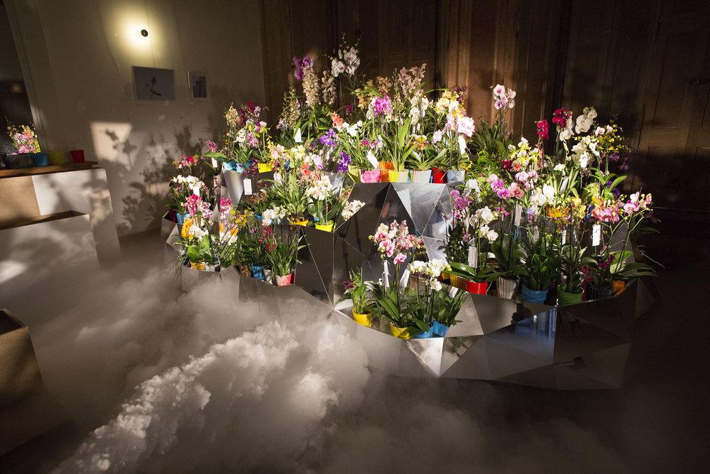 Le Nuage d'orchidées 3D de Janne Kyttanen pour la Journée Internationale de l'Orchidée
