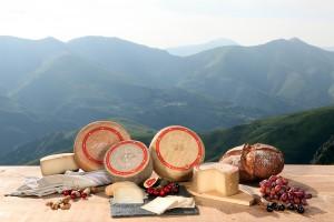 La gamme de fromages AOP Ossau-Iraty