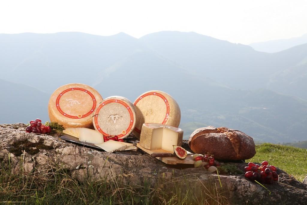 La gamme de fromages AOP Ossau-Iraty (@Syndicat AOP Ossau-Iraty)