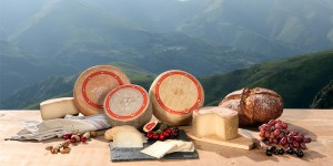 La gamme de fromage Ossau-Iraty