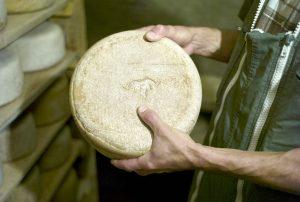 Ossau-Iraty : Un producteur de fromage fermier dans sa cave d'affinage (crédit Benat Erbin)