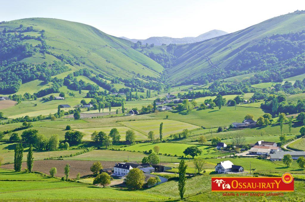 Ossau-Iraty : le territoire de l'Appellation côté Béarn