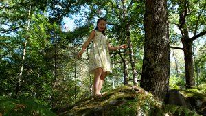 Jouer en forêt de Fontainebleau